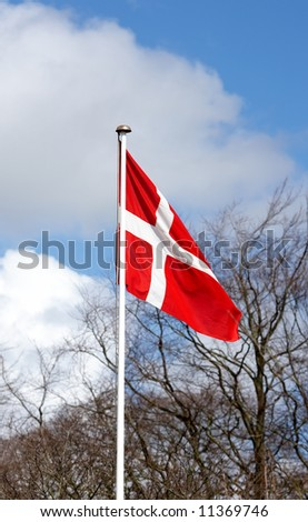 The Danish flag an early morning in the spring - stock photo
