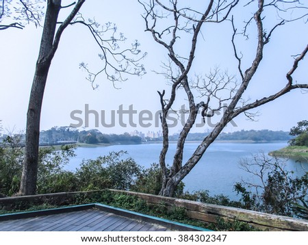 The dead tree and lakeside views - stock photo