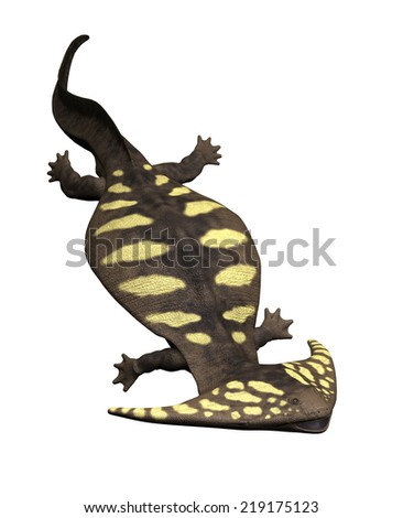 The diplocaulus was a large prehistoric salamander that lived during the Permian Period in North America. - stock photo