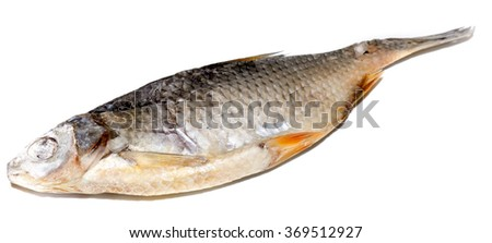 The Dried Fish on a color background. - stock photo