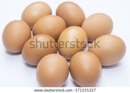 The egg is placed on a white background. - stock photo