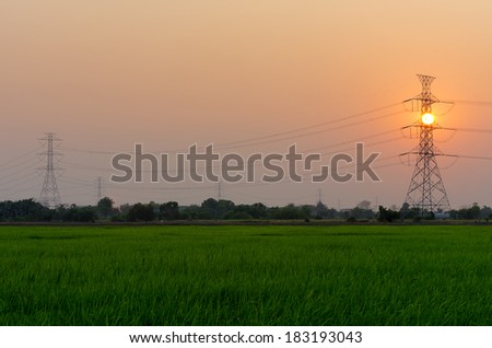 The electric poles in the field as twilight. - stock photo