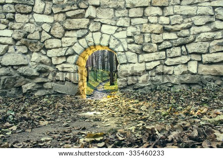 the entrance to the fairy world - stock photo