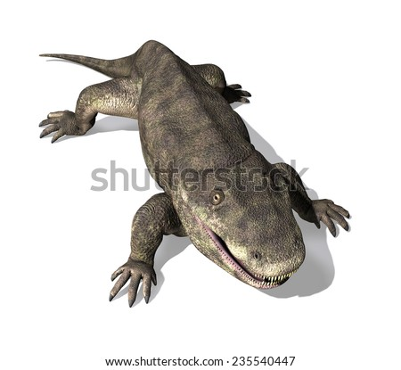 The Eryops was a prehistoric amphibian that lived during the early Permian Period. - stock photo