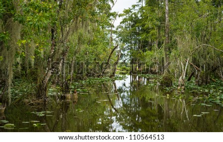 The Everglades are subtropical wetlands located in the southern portion of the U.S. state of Florida. This is a National Park and a very popular travel destination. - stock photo