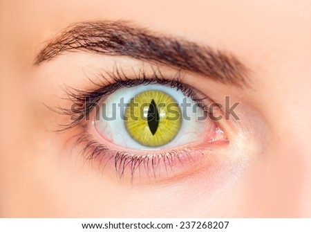 The eyes of a girl in the form of eye cat  - stock photo