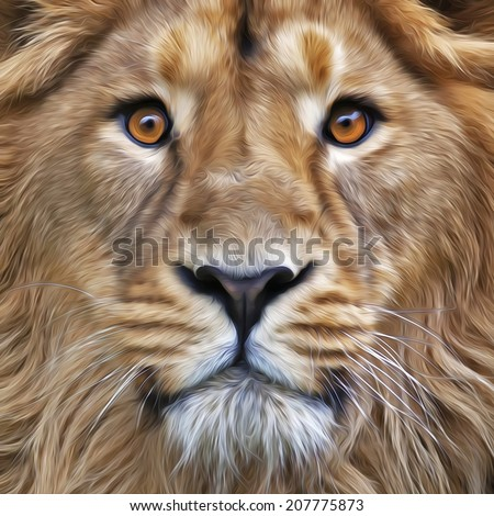 The face of young Asian lion with widely open eyes. The King of beasts, the biggest cat, looking straight into the camera. Illustration in oil painting style. Great for user pic, icon, label, tattoo. - stock photo