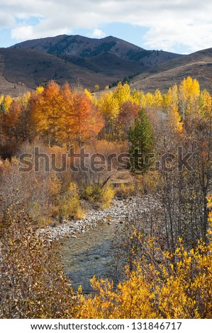 The fall colors of Sun Valley, Idaho - stock photo