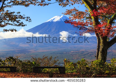 The fall season of Mt. Fuji in Japan with nice yellow color - stock photo