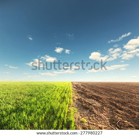 The field where one part with grass and second with ground and blue sky with clouds - stock photo