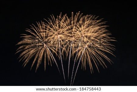 The fireworks display in black sky background to celebration - stock photo