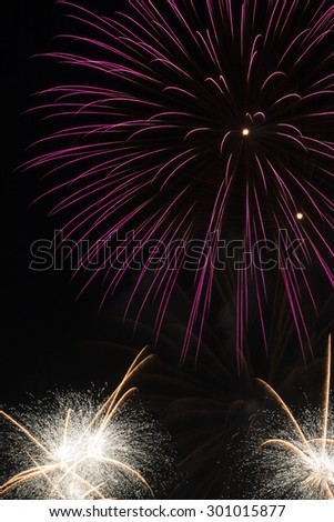 The fireworks on special night. - stock photo