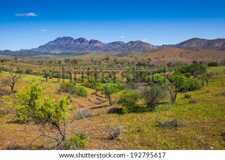 The Flinders Ranges, South Australia - stock photo
