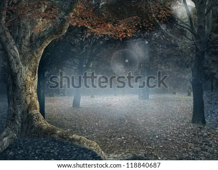 The Foggy Forest - Vintage Style - stock photo