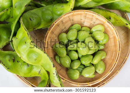The fresh Parkia is tropical stinking edible beans in weave basket on weave basket - stock photo