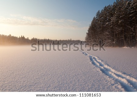 The frozen winter lake in wood under snow - stock photo