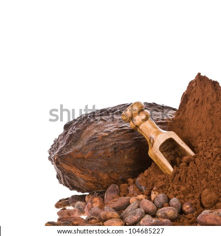 the fruit of the cocoa. a lot of ground cocoa beans, and with a wooden spoon - stock photo