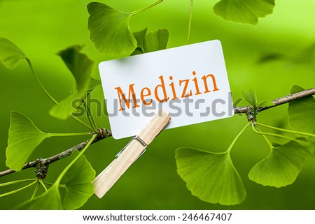 The German Word Medizin, translation: medicine in a Ginkgo Tree - stock photo
