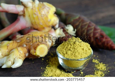 The Ginger (Zingiber officinale) The roots are used as a cure for male impotence, to relieve headache, and consumed when suffering from the common cold. Ginger produces a hot, fragrant kitchen spice.  - stock photo