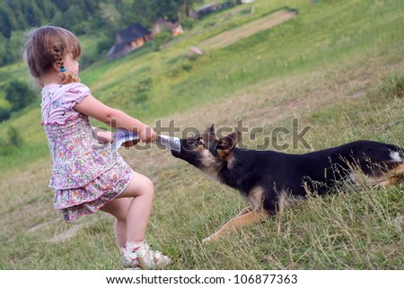 the girl plays with a sheep-dog and takes away sheets of paper from a dog - stock photo