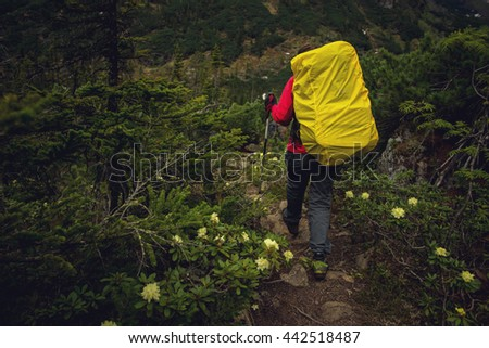 the girl with the backpack in the woods moving along a mountain path - stock photo