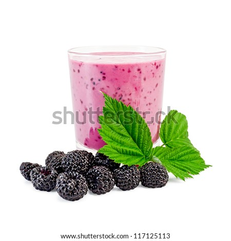 The glass of milkshake, berries and green twig blackberry isolated on white background - stock photo