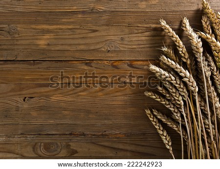 The golden harvest on old wooden table - stock photo