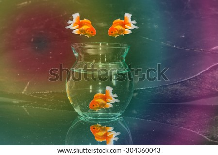The goldfish jump to fishbowl and the colorful background. - stock photo
