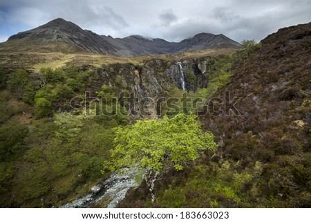 The gorge near Glennbrittle with lush green plants and a waterfall in the background - stock photo