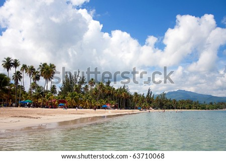 The gorgeous coconut palm lined Luquillo beach in the island located on the large island of Puerto Rico. - stock photo