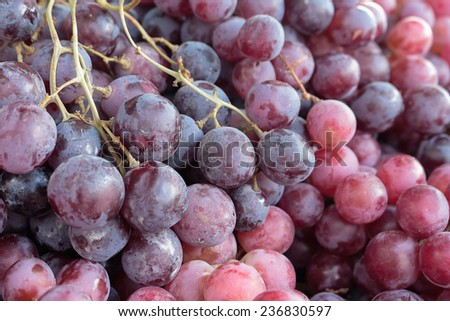 The grapes are sold in the market. - stock photo
