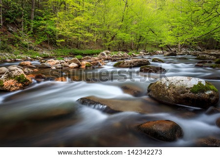 The Great Smokey Mountains National Park, spring time rushing stream - stock photo