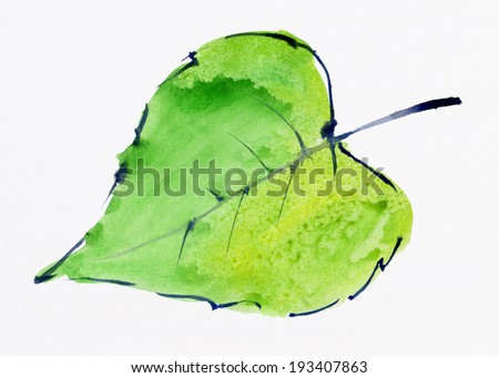 The green leaf. Watercolor. - stock photo