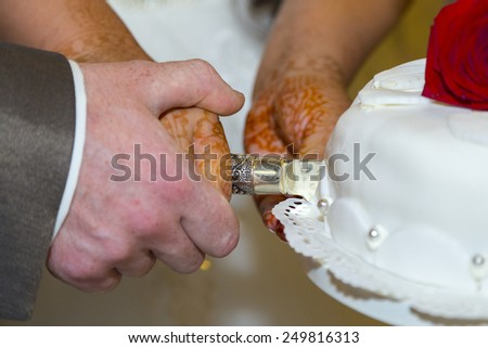 The groom and bride cutting the wedding cake - stock photo