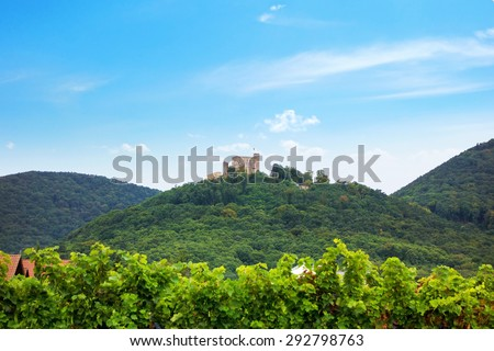 The Hambach Castle and Vineyards in summer - stock photo