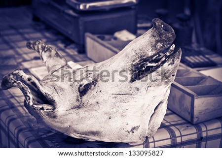 The head of a pork lying on the butcher´s desk. - stock photo
