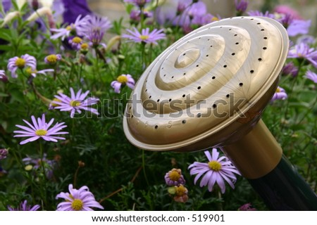 The head of a watering can with some flowers. - stock photo