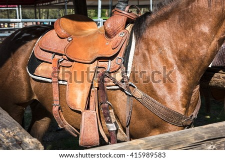 The horse with rodeo equipment for cowboys and cowgirls - leather saddle ready for riding - stock photo