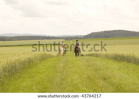 The horseman, horsewoman and dog ride on the road. - stock photo