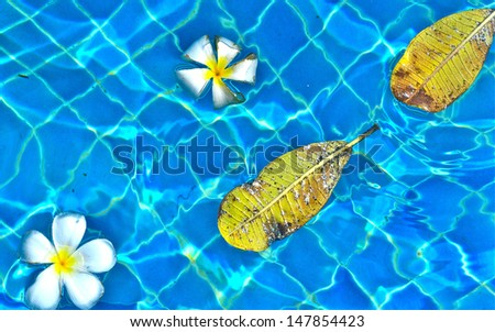 The hotel has a swimming pool. - stock photo