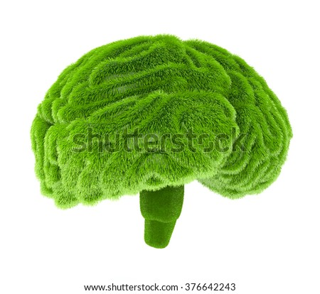 The human brain is covered with green grass. The metaphor of the wild, natural or imperfect intelligence in the design of information related to eco - stock photo