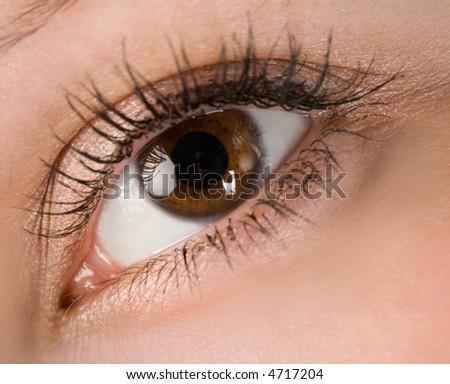 the human wide open brown eye macro - stock photo