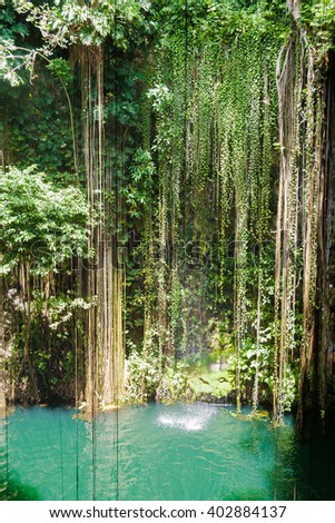 The Ik Kil cenote close to Chichen Itza, is one of the touristic attractions of the area. Green vegetation and emerald waters to swim and relax.  - stock photo