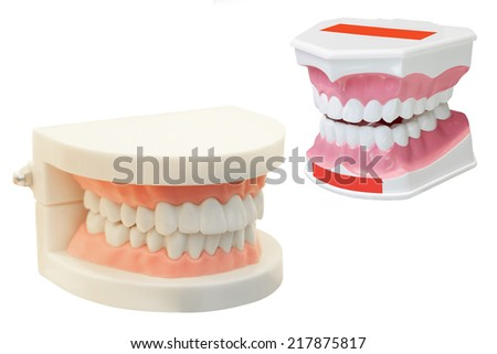 The image of dentures under the white background - stock photo