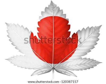 The Japan flag painted on  cannabis or marijuana leaf - stock photo