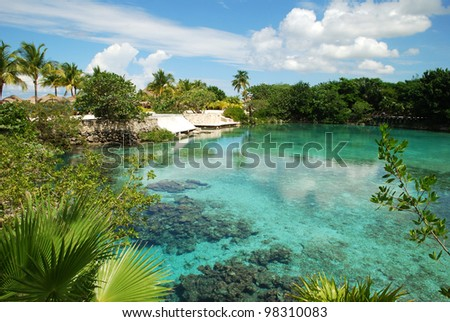 The lagoon of fresh water just next to Caribbean Sea in ecological park on Cozumel island (Mexico). - stock photo