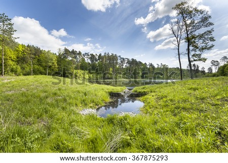 The lake in the forest in South Poland during summer day. - stock photo