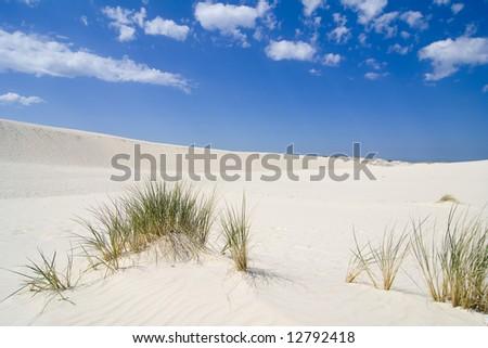 the landscape on desert Leba - Poland - stock photo