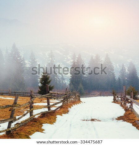 the last days of winter in the mountains of Ukraine, thick fog. Carpathians. Europe - stock photo