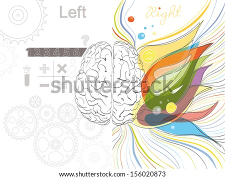 The left and the right brain functions - stock photo